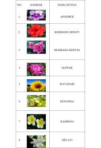 bunga bunga yandar ydl
